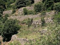Antigues feixes a la zona de les Deveses