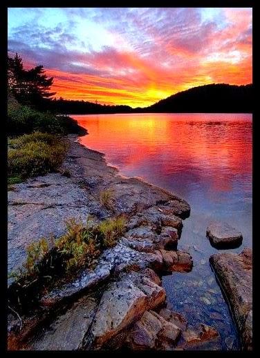 Keunikan Dan Keajaiban Alam Ciptaan Ilahi