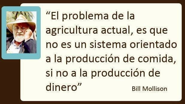 A mercantilização das coisas (aqui agricultura) sob o capitalismo
