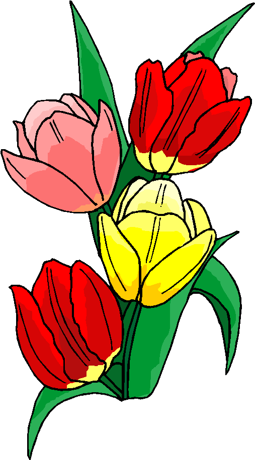 Colorful Flower Free Clipart