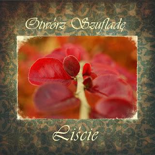 http://szuflada-szuflada.blogspot.ie/2013/11/w-listopadzie-otwieramy-szufalde.html