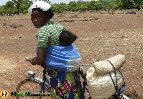 Bicicleta Transportadora