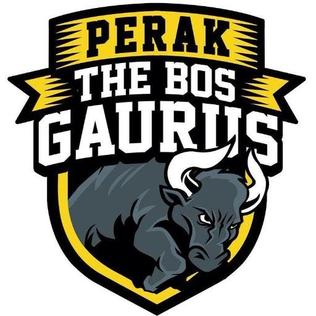 The Bos Gaurus