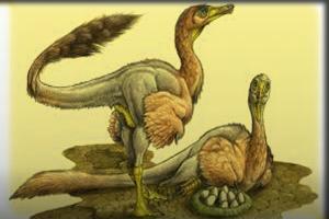 Enigmatic Dinosaurs