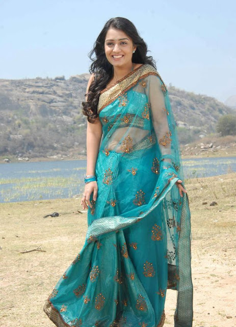 nikitha in saree hot photoshoot