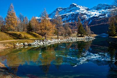 Reflexiones de otoño en el Lago Silvaplana, Valle de Engadina en los Grisones, Suiza.