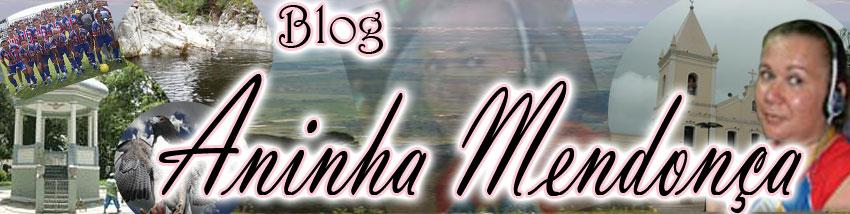 Blog Aninha Mendonça