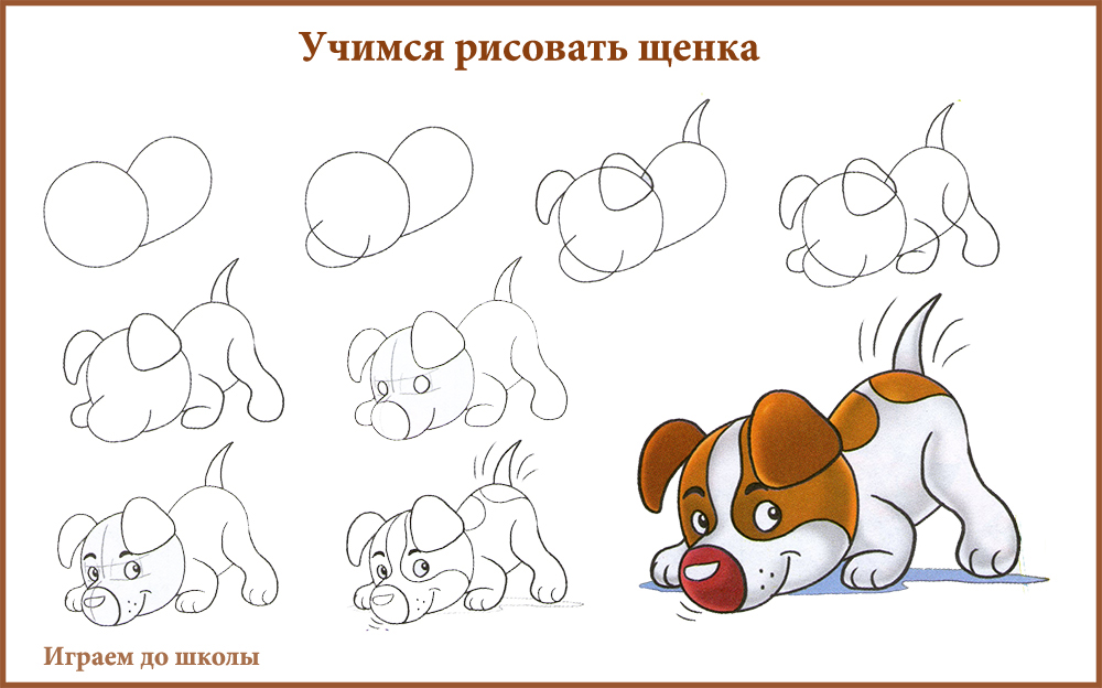 Как научиться рисовать животных. видео