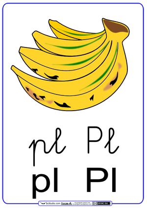 Fichas para trabajar las sílabas pl_