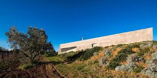 Arquitectura Sostenible, Vivienda con Techo de Jardines