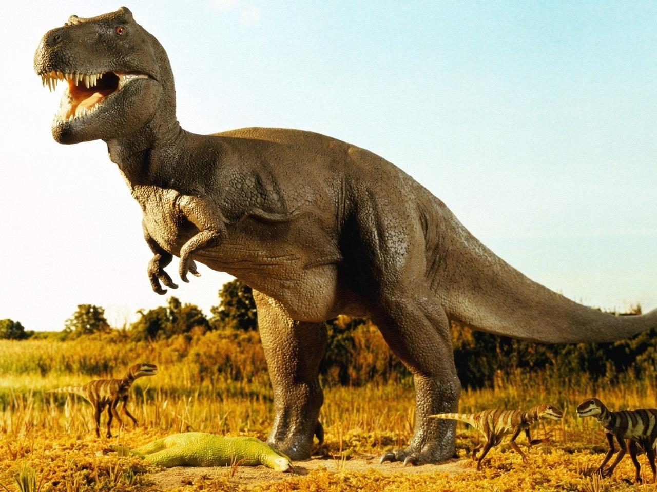 Imagine Images hd Dinosaur Awesome Imagine hd