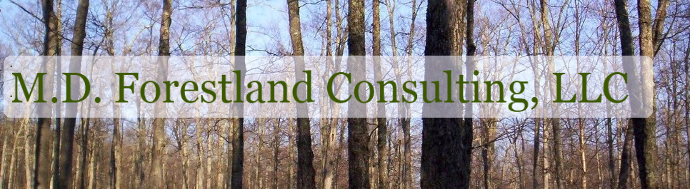 M.D. Forestland Consulting, LLC