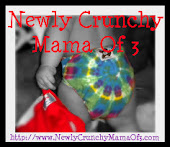 Newly Crunchy Mama of 3
