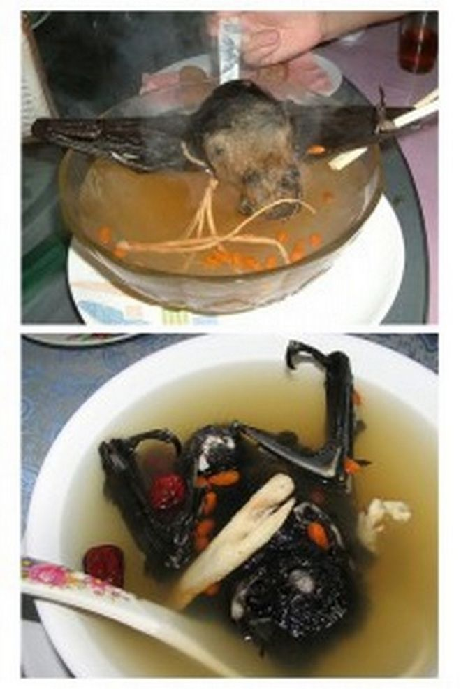 Most Weird Asians Foods Seen On www.coolpicturegallery.us