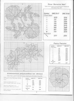 http://3.bp.blogspot.com/-42FEyPAgvC4/TxK5tXkvEbI/AAAAAAAAF7c/VrJ4BzrcK9I/s400/DMC+Botanic+gardens+03.jpg