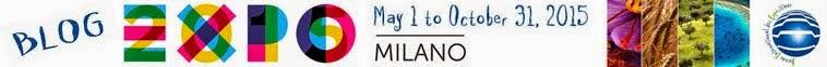 Blog Expo 2015 Milano