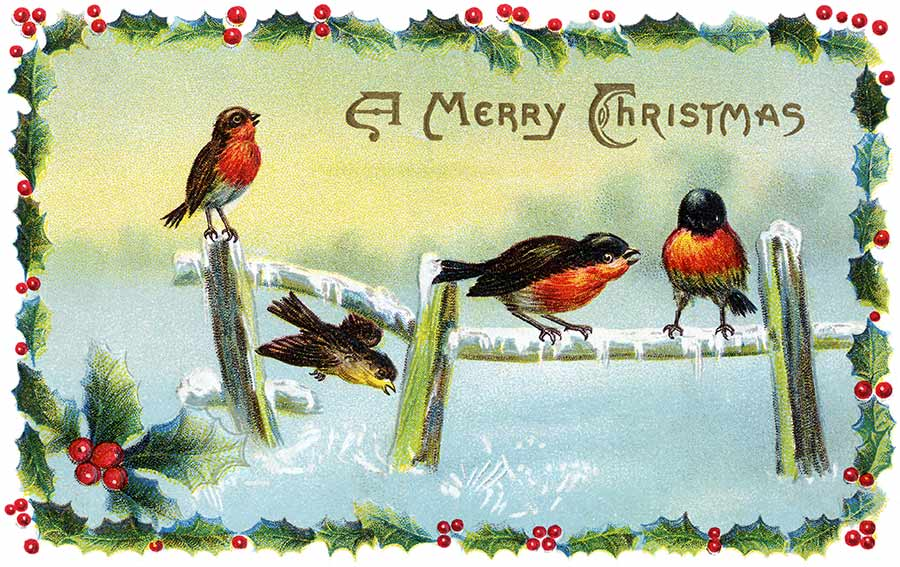 Vintage Holiday Graphics: CHRISTMAS CARDS FEATURING BIRDS