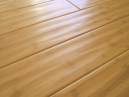 Bamboo floor better bamboo flooring cork flooring for Benefits of bamboo flooring