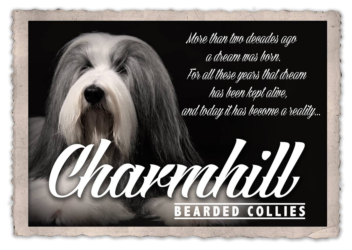 Charmhill Bearded Collies