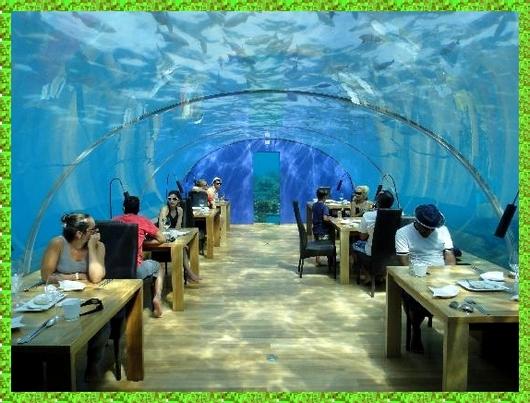 Incre ble restaurante bajo el mar en las islas maldivas for Hotel bajo el agua precio