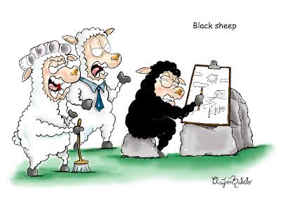 Ovelha Negra - Um Asno
