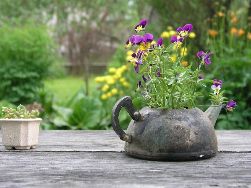 Уральский садовод
