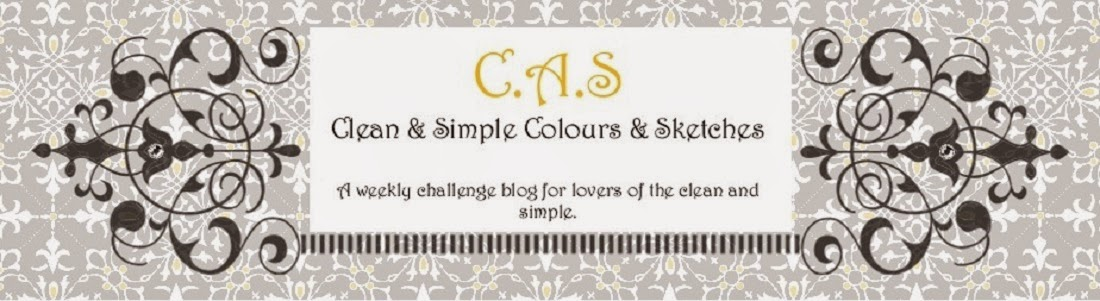 CAS - Colours and Sketches Blog