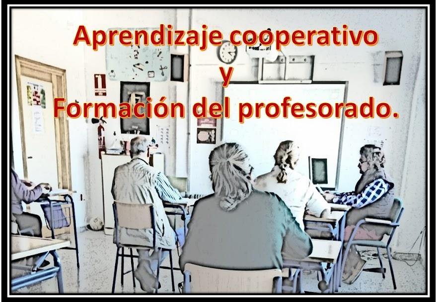Formación del profesorado.