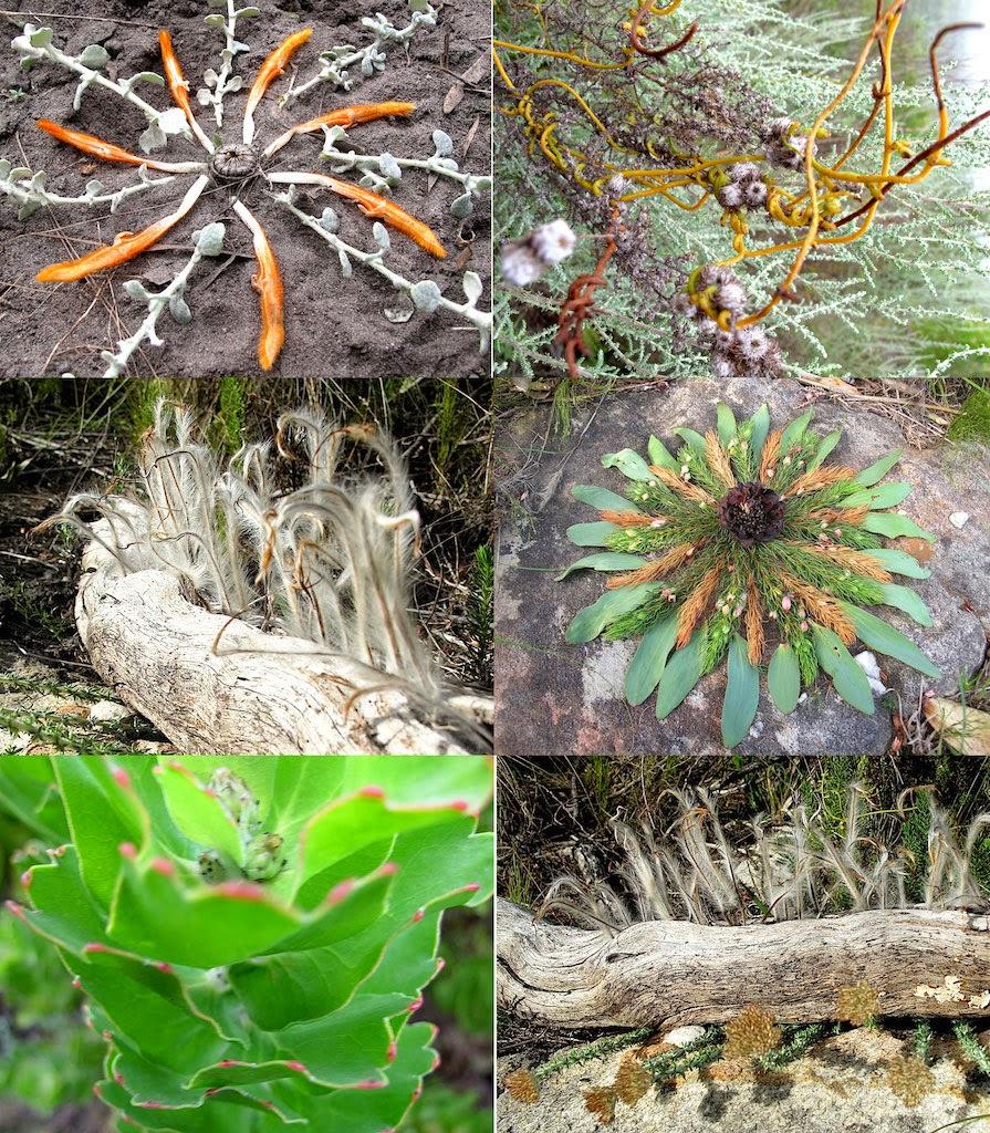Leaf and Flower art - Bhodi Khaya Retreat
