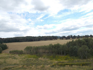 Tuesday(8-9-2015) :- The Polish countryside while travelling from Prague to Krakow.