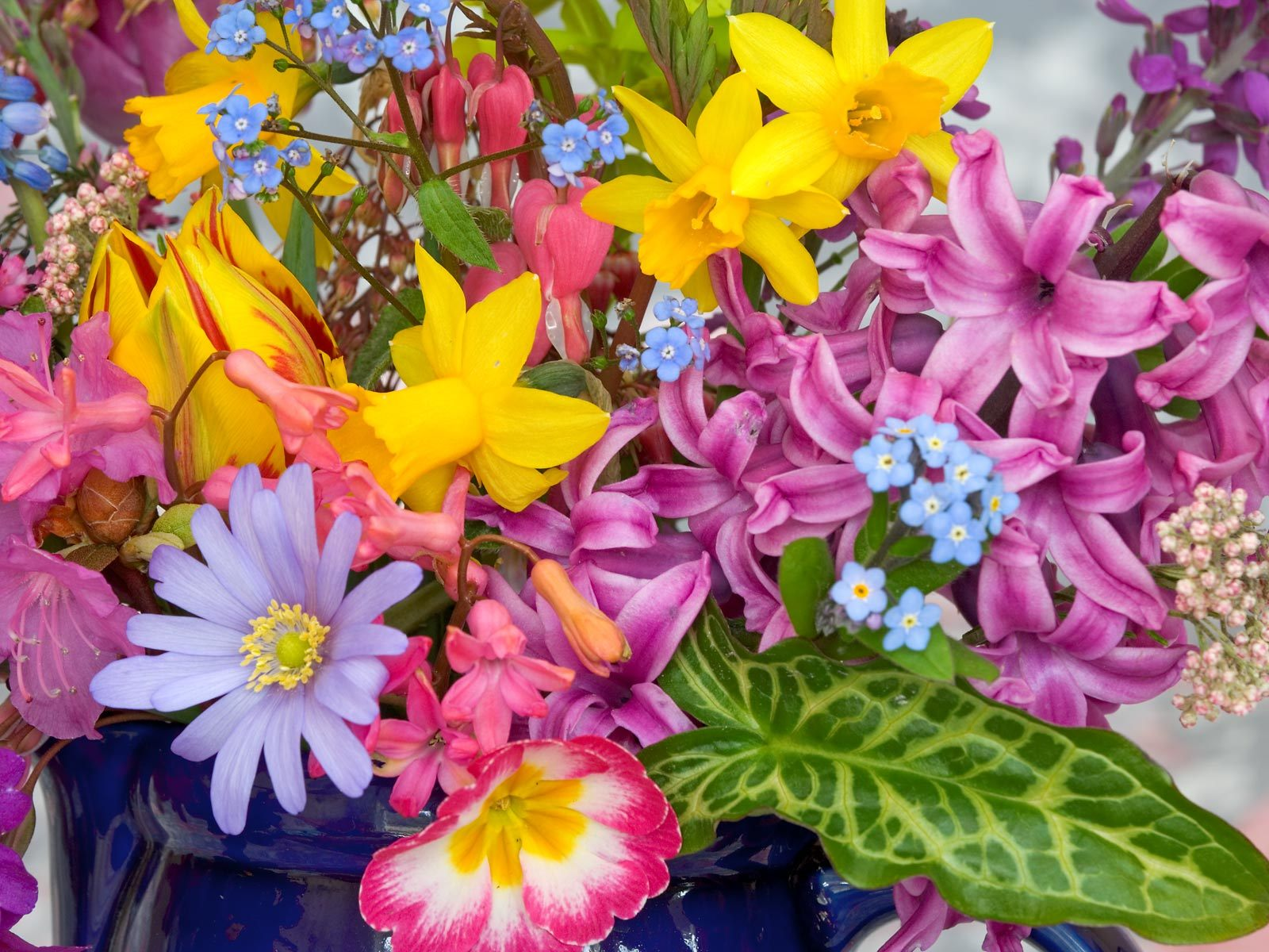 Flowers Names