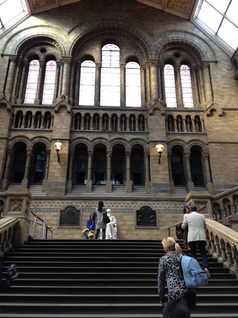 Journey Back in Time - Natural History Museum