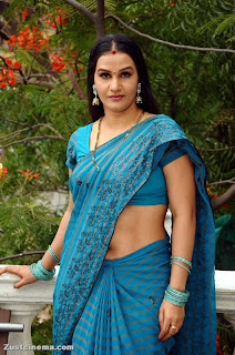Apporva south actress in saree