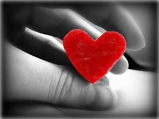 un pequeño corazon fotografias tiernas