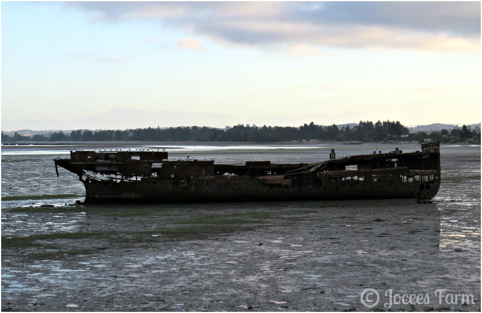 Motueka Shipwreck  http://joceesfarm.blogspot.co.nz