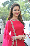 Tamanna latest glam pics at Bengal Tiger event-thumbnail-6