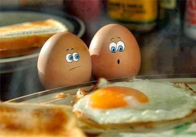 Bahaya Mengkonsumsi Telur Setengah Matang