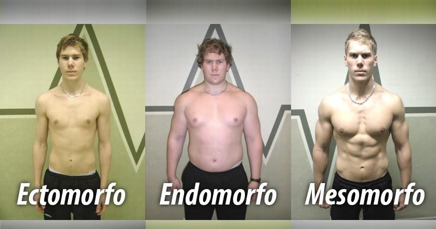 Tu LoCoMoToR73: Tipos cuerpos somáticos: Endomorfos