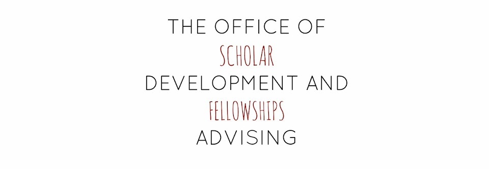 Temple University Fellowships Advising