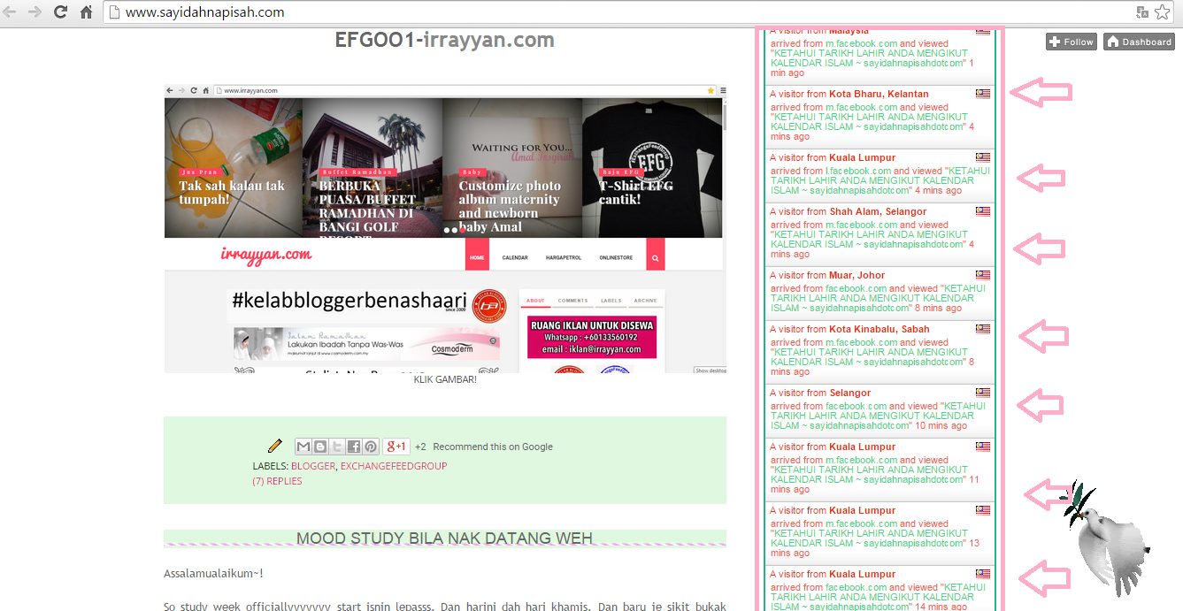 PAGEVIEW BLOG MELETOP