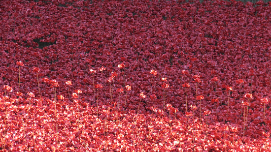 Blood Swept Lands and Seas of Red 10 November 2014