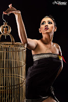 Chacy Luna - Bird cage