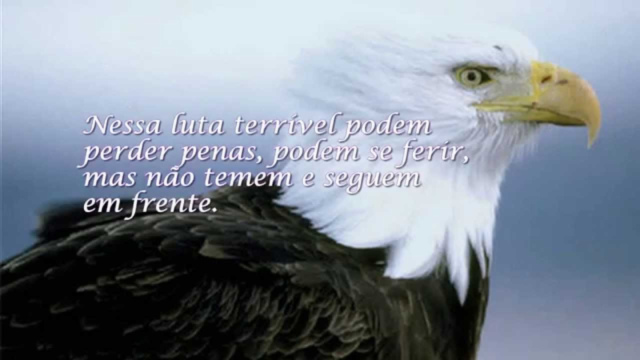 O Benfica das águias nobres