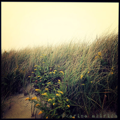 Lemon Sky at Skaket Beach, foggy Cape Cod morning by Karina Allrich