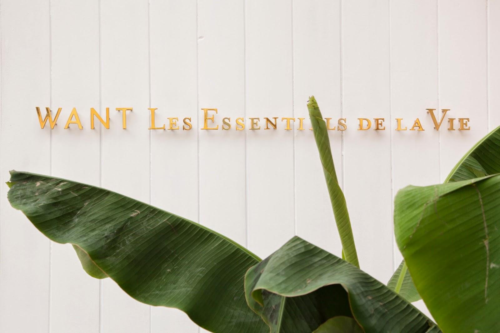 Life Through Preppy Glasses: WANT Les Essentiels de la Vie ...