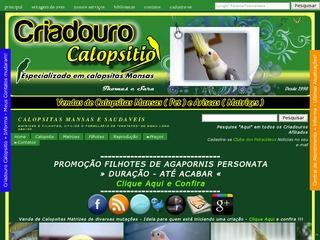 Criadouro de Calopsitas e Agapornis