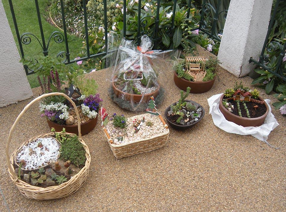 Tiempo jardin jardin en miniatura - Como aprender jardineria ...