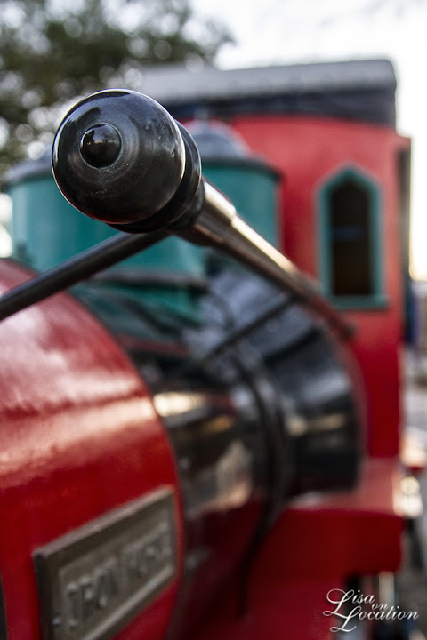 Landa Park Railroad, New Braunfels. Lisa on Location photography, 365 photo project.