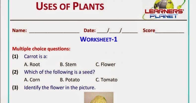 essay on plants for grade 2