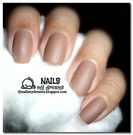 Chic Touch Of Tan NAIL POLISHES USED